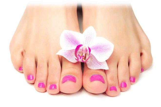 красивые ножки с цветком