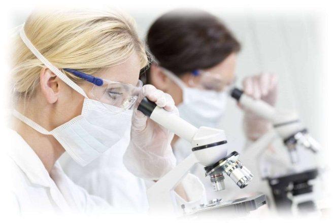 два ученых смотрят в микроскопы